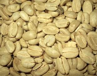 How You Can Make Green Coffee Bean Extract