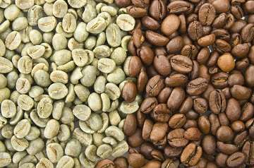 Green Coffee Bean is not Your Average Weight Loss Supplement